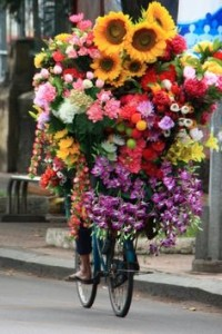 Delivery Flower